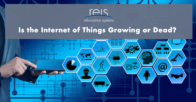 Is the Internet of Things Growing or Dead?